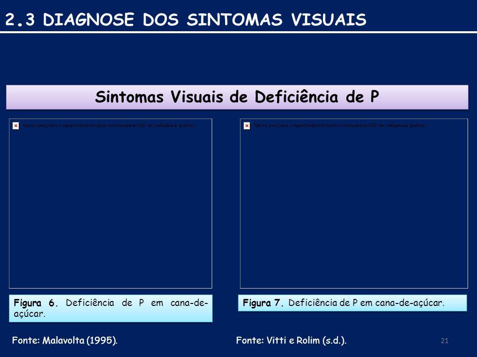 Figura 6.Deficiência de P em cana-de- açúcar. Fonte: Malavolta (1995).