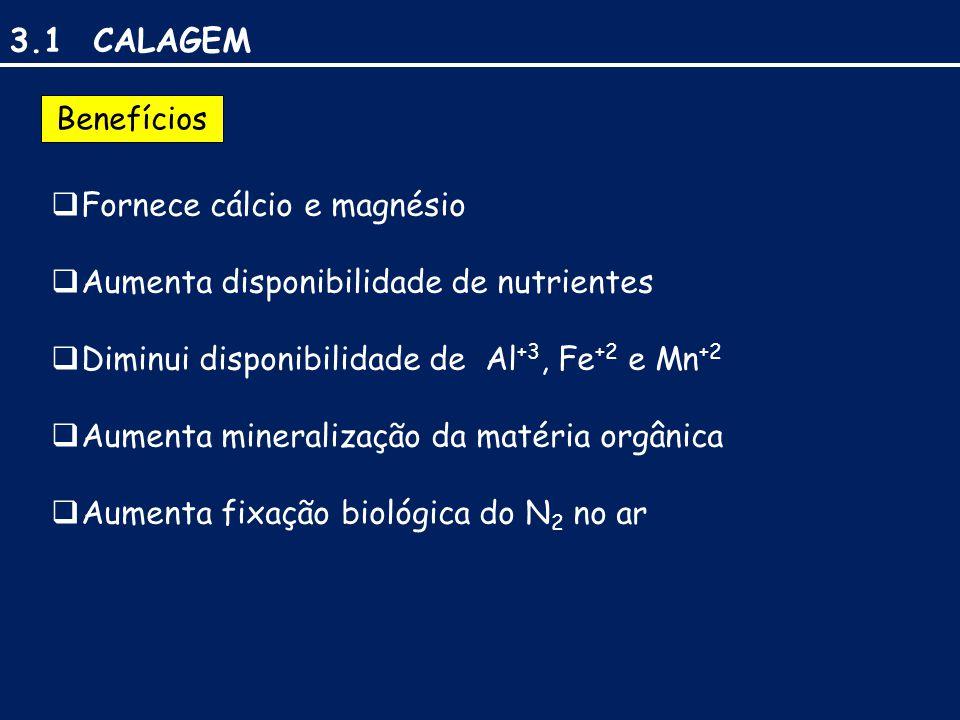 3.1 CALAGEM Benefícios  Fornece cálcio e magnésio  Aumenta disponibilidade de nutrientes  Diminui disponibilidade de Al +3, Fe +2 e Mn +2  Aumenta mineralização da matéria orgânica  Aumenta fixação biológica do N 2 no ar