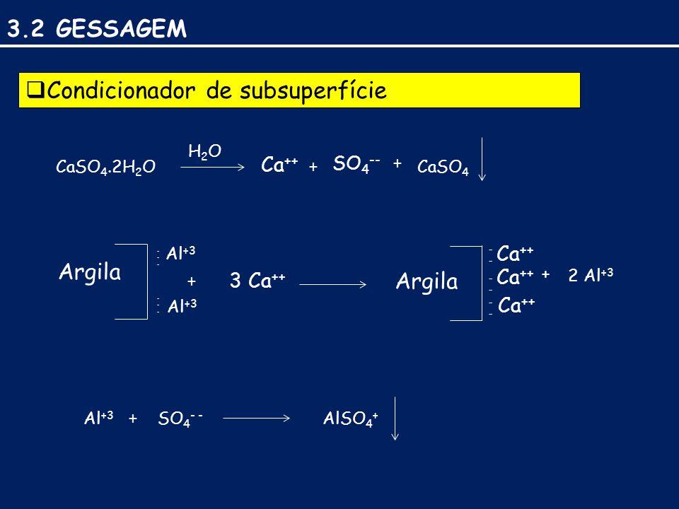 3.2 GESSAGEM  Condicionador de subsuperfície Argila ------ + ---- + CaSO 4.2H 2 O H2OH2O Ca ++ + SO 4 -- CaSO 4 + ------ Al +3 3 Ca ++ ---- ---- Ca ++ 2 Al +3 Al +3 + SO 4 - - AlSO 4 +