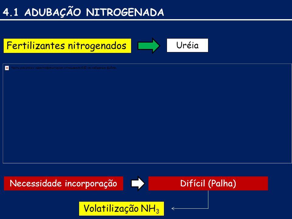 4.1 ADUBAÇÃO NITROGENADA Fertilizantes nitrogenados Necessidade incorporaçãoDifícil (Palha) Volatilização NH 3 Uréia