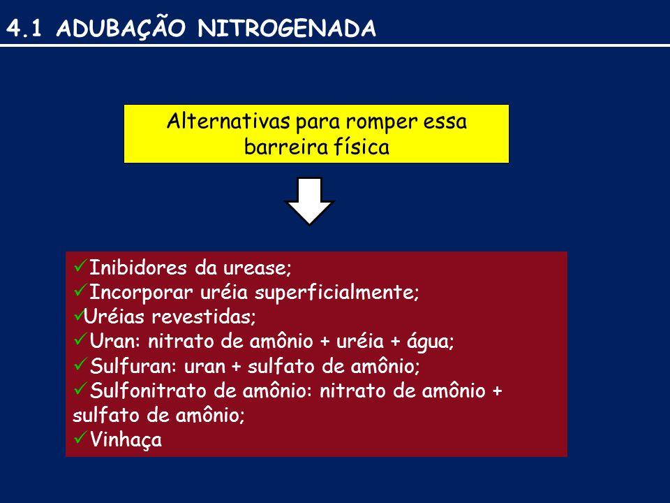 4.1 ADUBAÇÃO NITROGENADA Inibidores da urease; Incorporar uréia superficialmente; Uréias revestidas; Uran: nitrato de amônio + uréia + água; Sulfuran: uran + sulfato de amônio; Sulfonitrato de amônio: nitrato de amônio + sulfato de amônio; Vinhaça Alternativas para romper essa barreira física