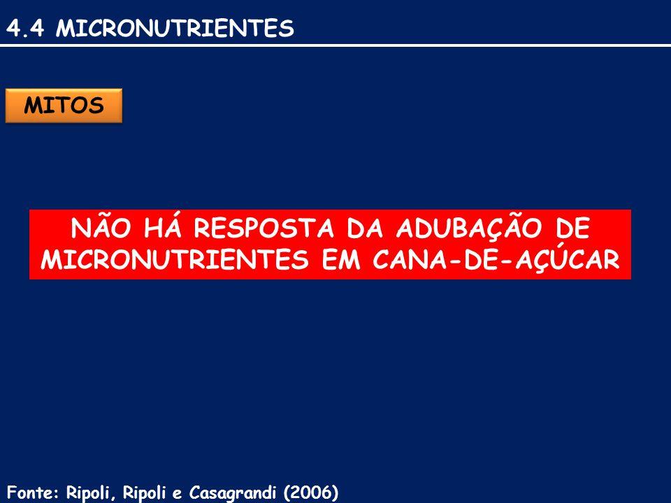 4.4 MICRONUTRIENTES MITOS NÃO HÁ RESPOSTA DA ADUBAÇÃO DE MICRONUTRIENTES EM CANA-DE-AÇÚCAR Fonte: Ripoli, Ripoli e Casagrandi (2006)