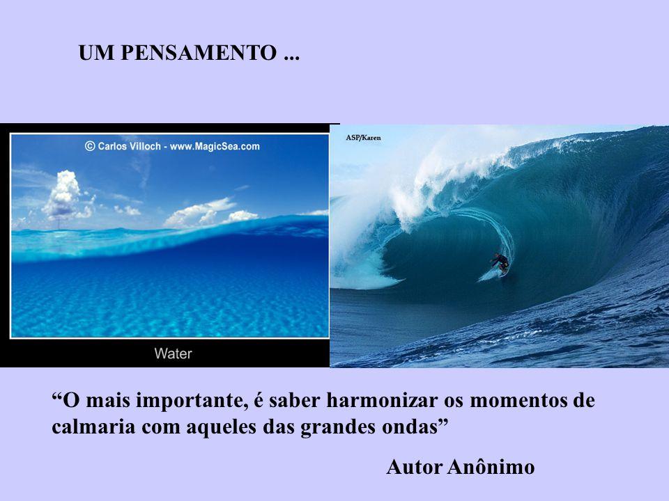 O mais importante, é saber harmonizar os momentos de calmaria com aqueles das grandes ondas Autor Anônimo UM PENSAMENTO...