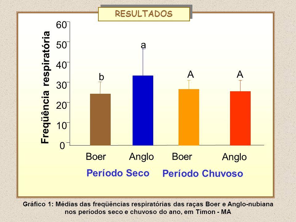 RESULTADOS Freqüência respiratória BoerAngloBoer Anglo 0 10 20 30 40 50 60 A a b A Período Seco Período Chuvoso Gráfico 1: Médias das freqüências resp