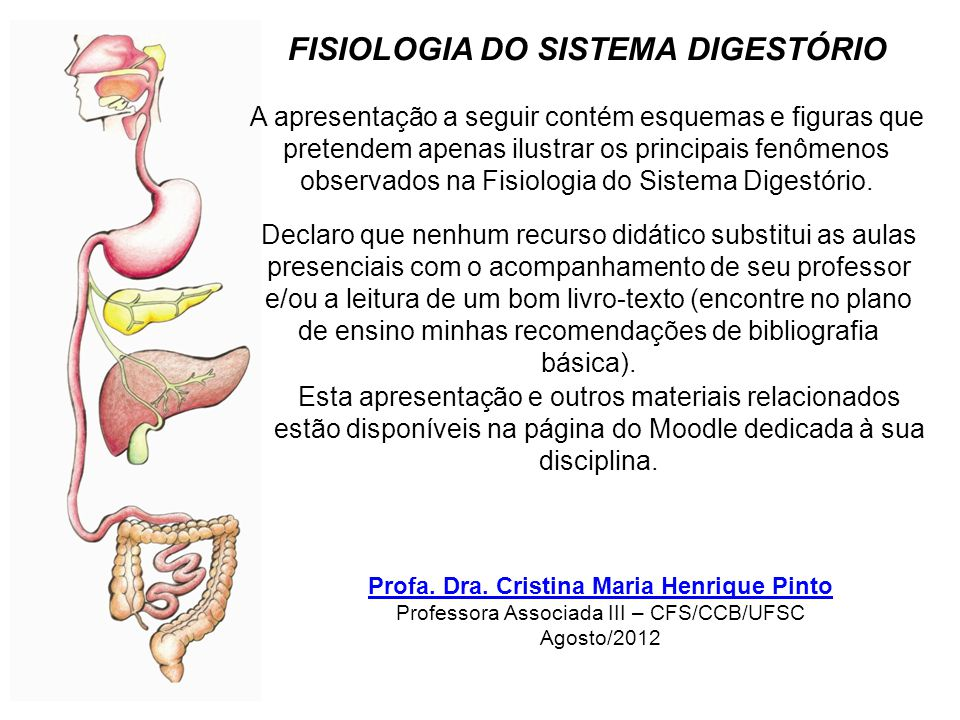 extraído de: Digestive System (Saladin, 2002 Anatomy and Physiology, chap.