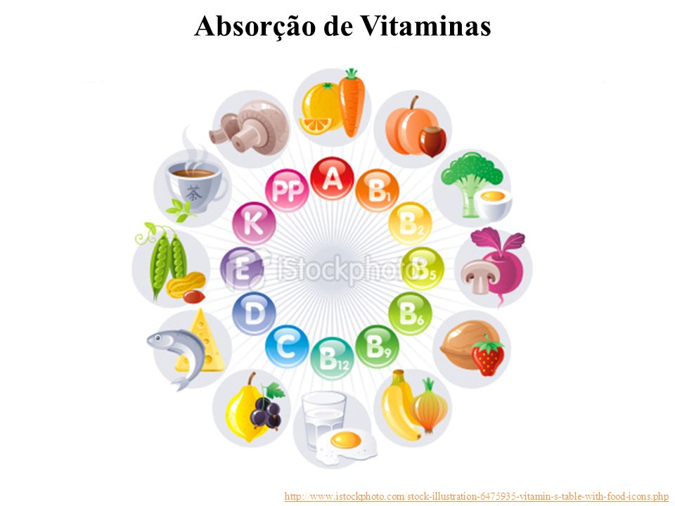 Absorção de Vitaminas http://www.istockphoto.com/stock-illustration-6475935-vitamin-s-table-with-food-icons.php