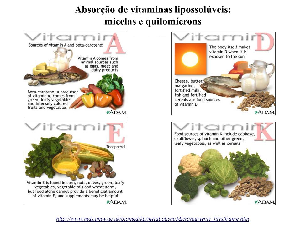 http://www.mds.qmw.ac.uk/biomed/kb/metabolism/Micronutrients_files/frame.htm Absorção de vitaminas lipossolúveis: micelas e quilomícrons