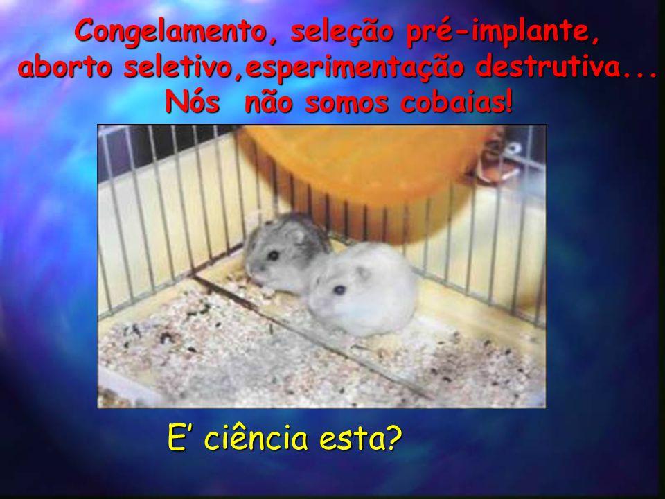 Congelamento, seleção pré-implante, aborto seletivo,esperimentação destrutiva...