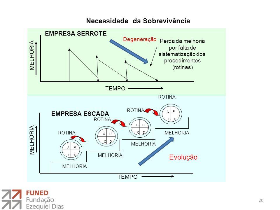 Perda da melhoria por falta de sistematização dos procedimentos (rotinas) EMPRESA SERROTE MELHORIA TEMPO MELHORIA EMPRESA ESCADA MELHORIA TEMPO ROTINA