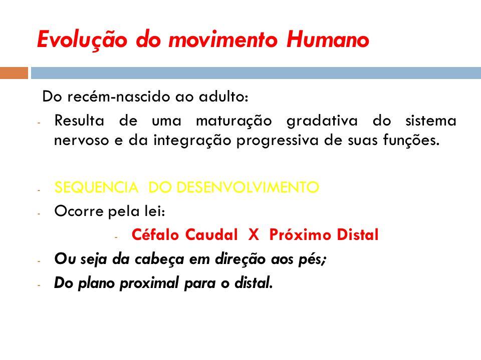 Evolução do movimento Humano Do recém-nascido ao adulto: - Resulta de uma maturação gradativa do sistema nervoso e da integração progressiva de suas funções.