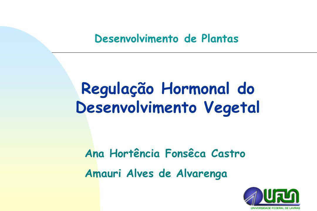 Regulação Hormonal do Desenvolvimento Vegetal Desenvolvimento de Plantas Ana Hortência Fonsêca Castro Amauri Alves de Alvarenga