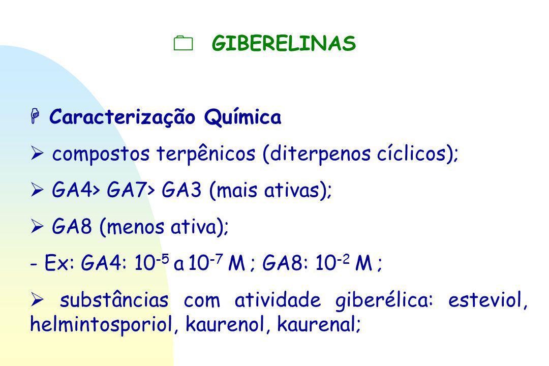  GIBERELINAS  Caracterização Química  compostos terpênicos (diterpenos cíclicos);  GA4> GA7> GA3 (mais ativas);  GA8 (menos ativa); - Ex: GA4: 10