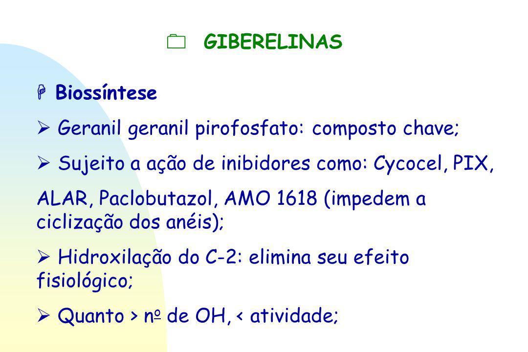  GIBERELINAS  Biossíntese  Geranil geranil pirofosfato: composto chave;  Sujeito a ação de inibidores como: Cycocel, PIX, ALAR, Paclobutazol, AMO