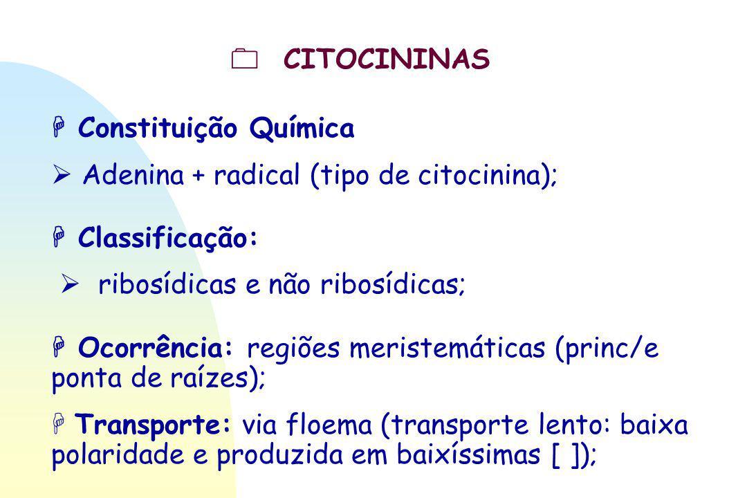  CITOCININAS  Constituição Química  Adenina + radical (tipo de citocinina);  Classificação:  ribosídicas e não ribosídicas;  Ocorrência: regiões