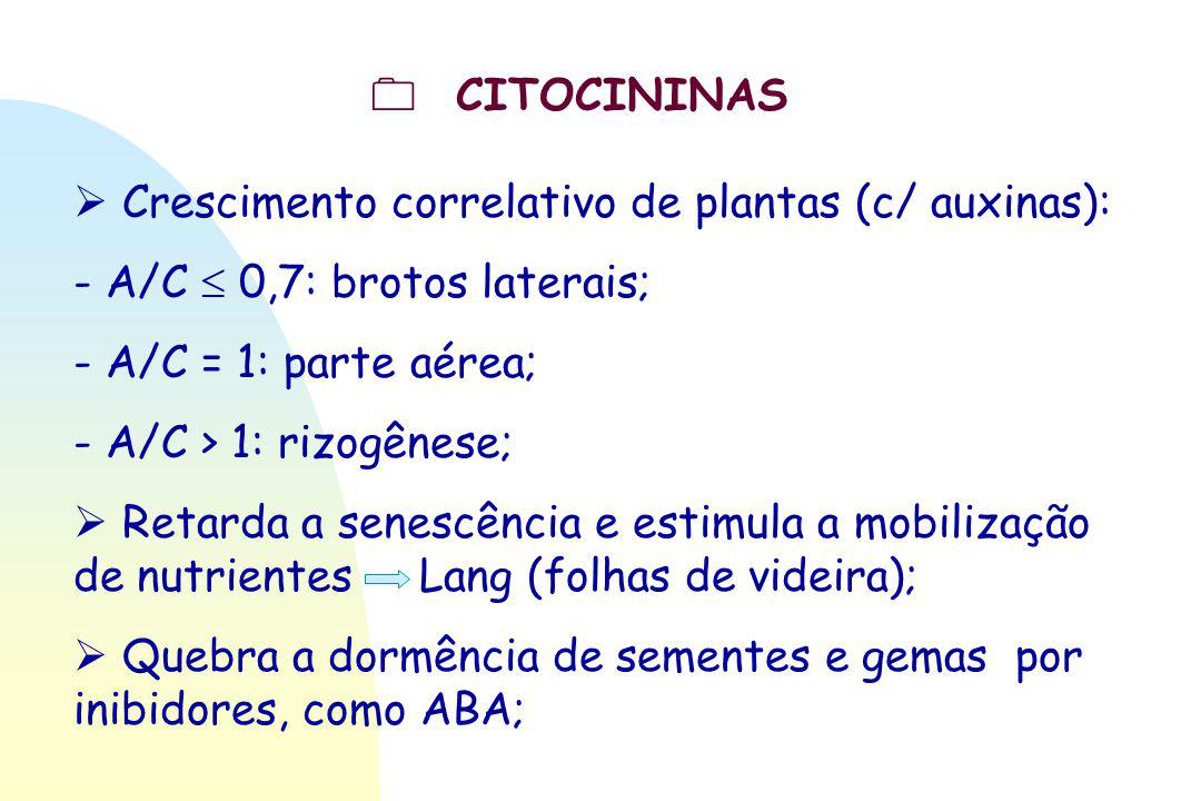  Crescimento correlativo de plantas (c/ auxinas): - A/C  0,7: brotos laterais; - A/C = 1: parte aérea; - A/C > 1: rizogênese;  Retarda a senescênci