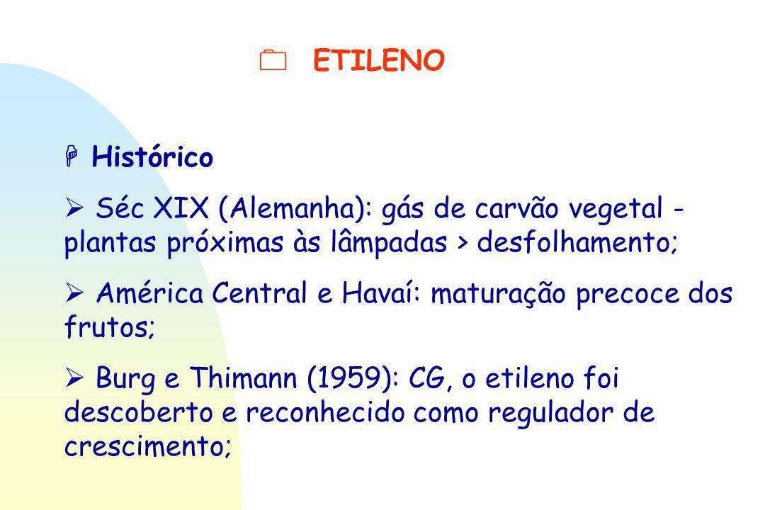  ETILENO  Histórico  Séc XIX (Alemanha): gás de carvão vegetal - plantas próximas às lâmpadas > desfolhamento;  América Central e Havaí: maturação