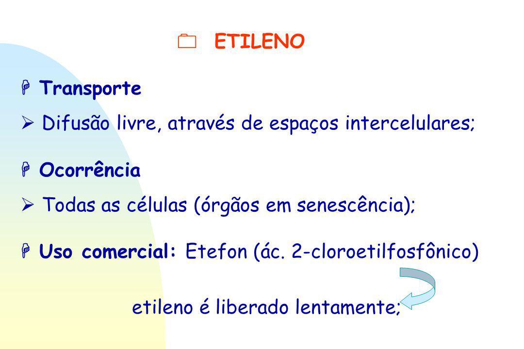  ETILENO  Transporte  Difusão livre, através de espaços intercelulares;  Ocorrência  Todas as células (órgãos em senescência);  Uso comercial: E