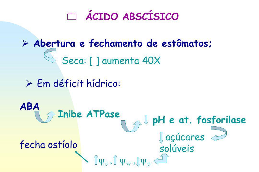 Abertura e fechamento de estômatos;  ÁCIDO ABSCÍSICO Seca: [ ] aumenta 40X ABA Inibe ATPase pH e at. fosforilase  Em déficit hídrico: açúcares sol
