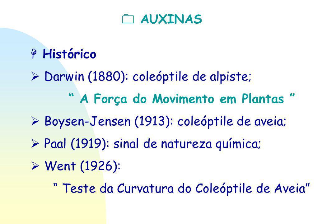 " AUXINAS  Histórico  Darwin (1880): coleóptile de alpiste; "" A Força do Movimento em Plantas ""  Boysen-Jensen (1913): coleóptile de aveia;  Paal"