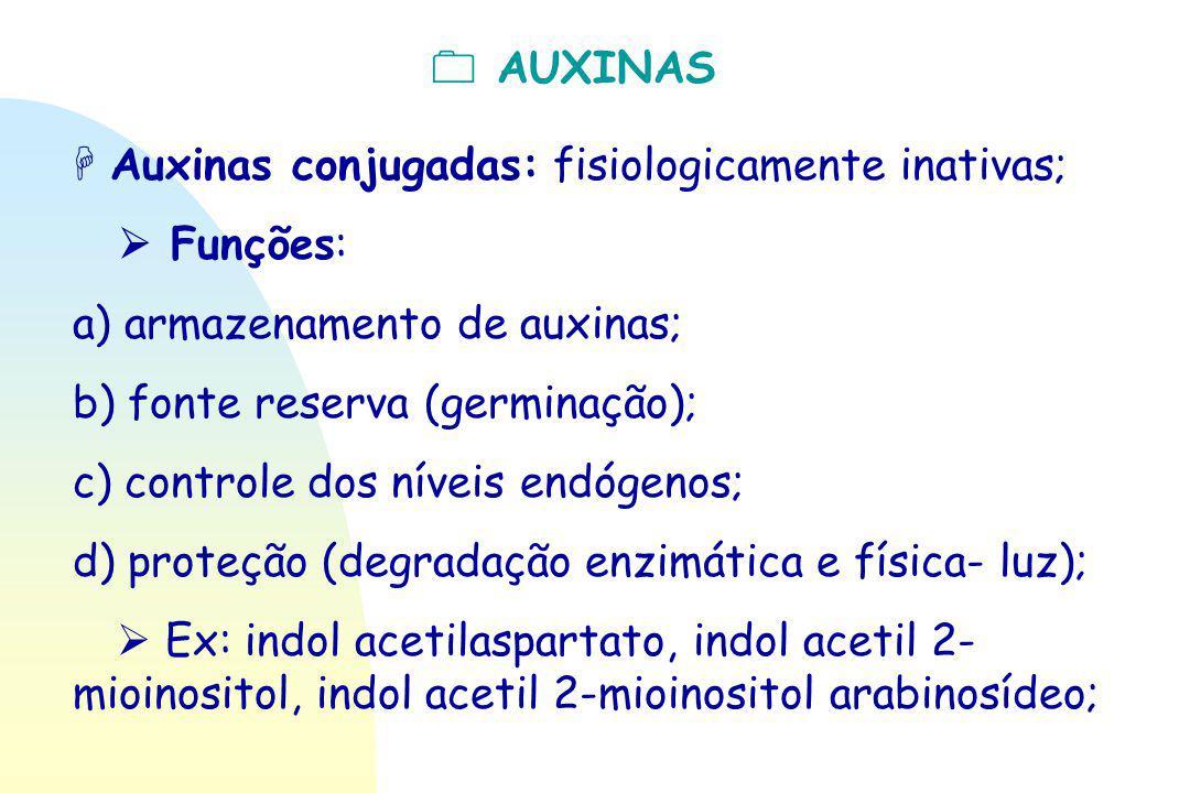  AUXINAS  Auxinas conjugadas: fisiologicamente inativas;  Funções: a) armazenamento de auxinas; b) fonte reserva (germinação); c) controle dos nív