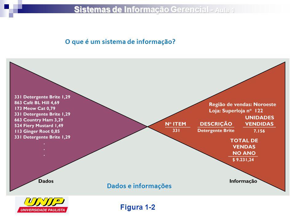 Figura 1-2 Dados e informações O que é um sistema de informação? Sistemas de Informação Gerencial - Aula 1