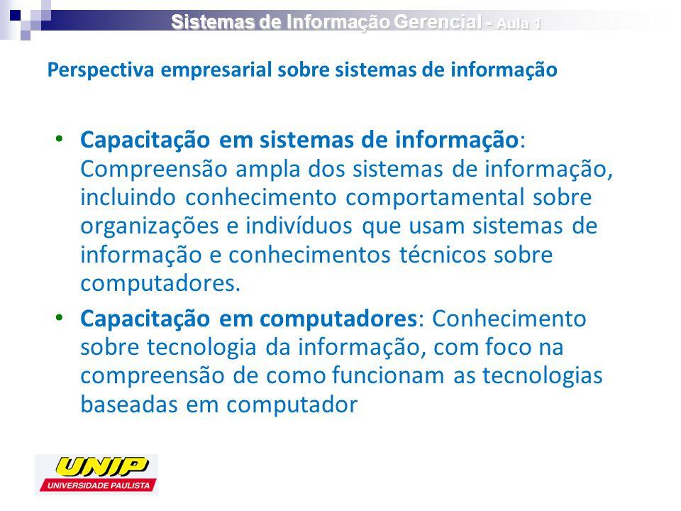 Capacitação em sistemas de informação: Compreensão ampla dos sistemas de informação, incluindo conhecimento comportamental sobre organizações e indivíduos que usam sistemas de informação e conhecimentos técnicos sobre computadores.