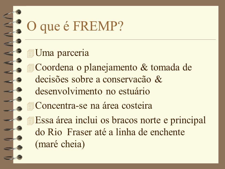 O que é FREMP.