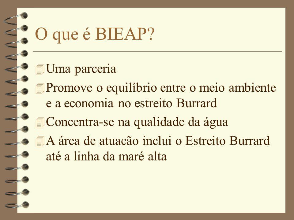 O que é BIEAP.
