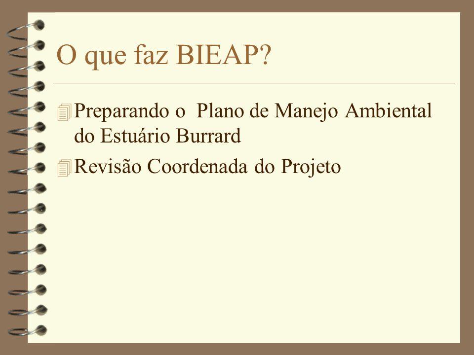 O que faz BIEAP.