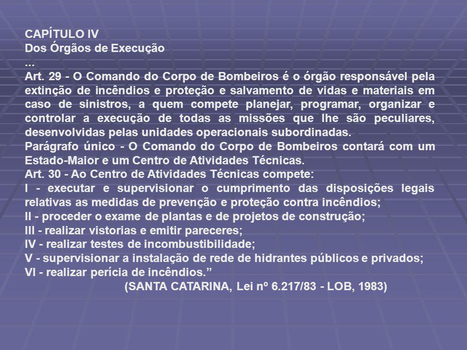 CAPÍTULO IV Dos Órgãos de Execução... Art. 29 - O Comando do Corpo de Bombeiros é o órgão responsável pela extinção de incêndios e proteção e salvamen