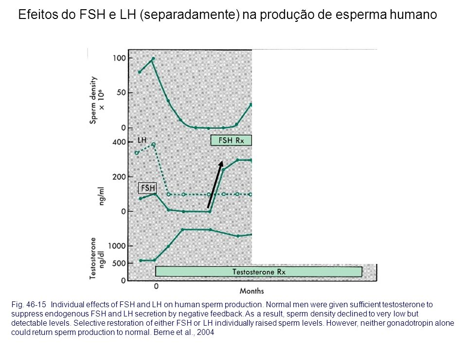 Fig. 46-15 Individual effects of FSH and LH on human sperm production. Normal men were given sufficient testosterone to suppress endogenous FSH and LH