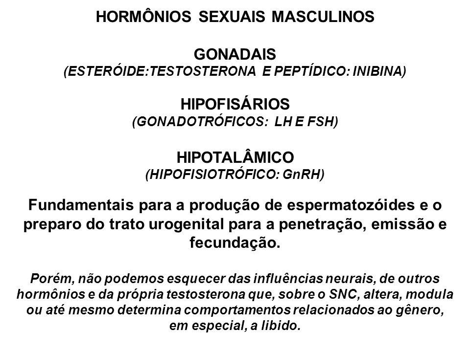 HORMÔNIOS SEXUAIS MASCULINOS GONADAIS (ESTERÓIDE:TESTOSTERONA E PEPTÍDICO: INIBINA) HIPOFISÁRIOS (GONADOTRÓFICOS: LH E FSH) HIPOTALÂMICO (HIPOFISIOTRÓFICO: GnRH) Fundamentais para a produção de espermatozóides e o preparo do trato urogenital para a penetração, emissão e fecundação.