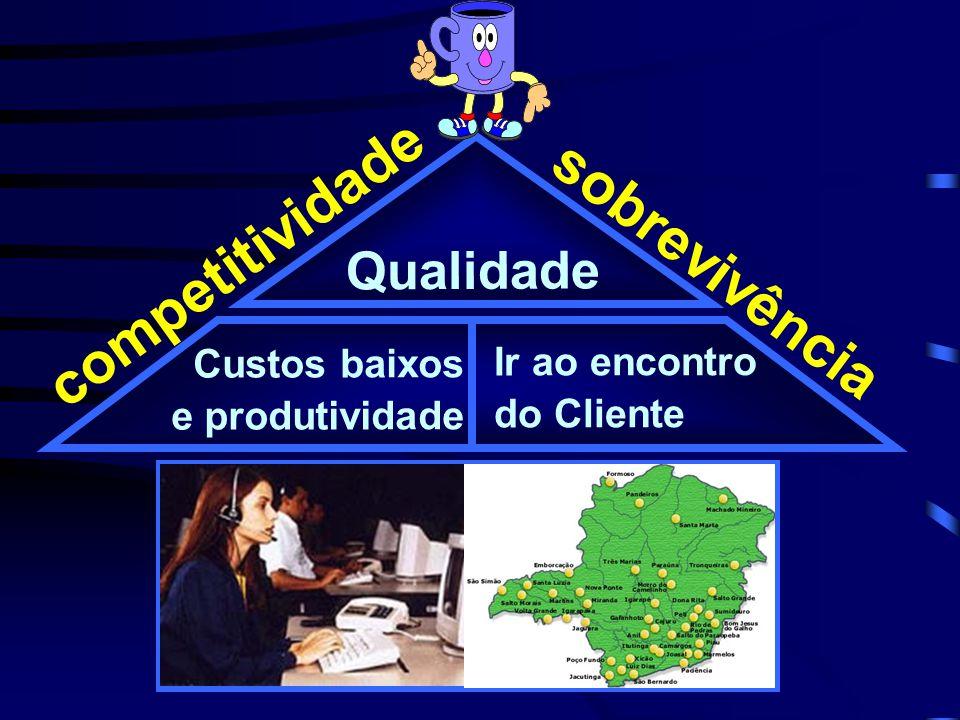 sobrevivência competitividade Custos baixos e produtividade Ir ao encontro do Cliente Qualidade Estratificação Verificação Histograma Diagrama de Pareto Diag.
