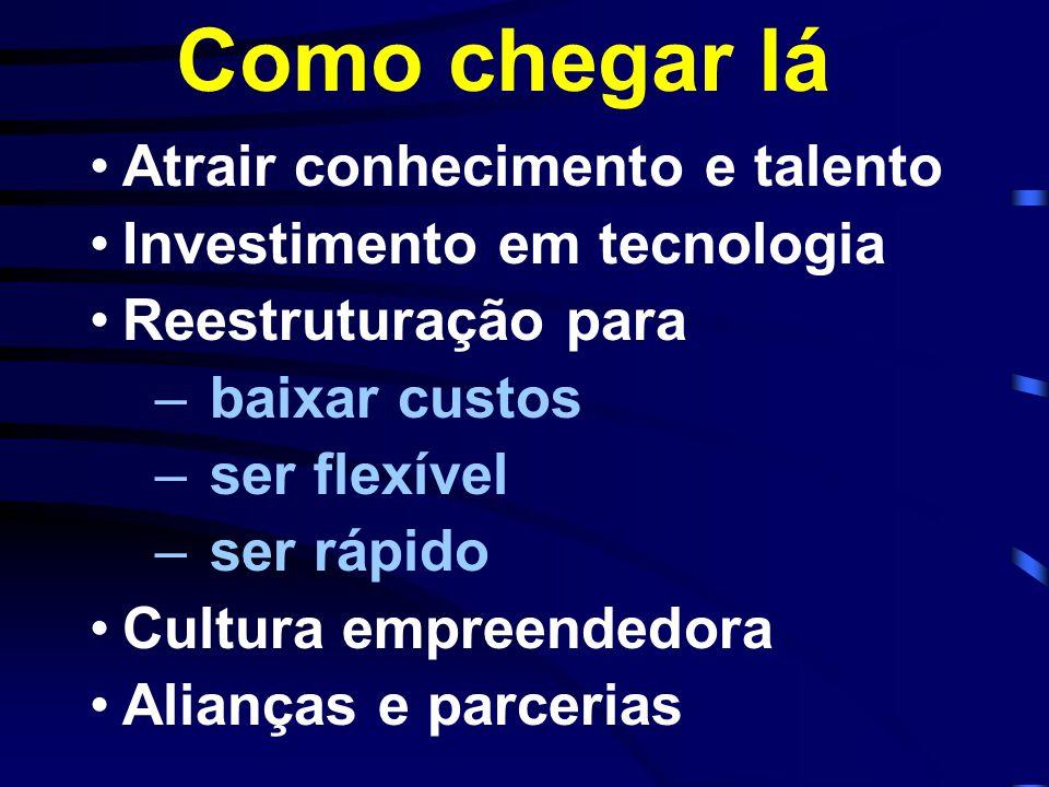 Atrair conhecimento e talento Investimento em tecnologia Reestruturação para –baixar custos –ser flexível –ser rápido Cultura empreendedora Alianças e parcerias Como chegar lá