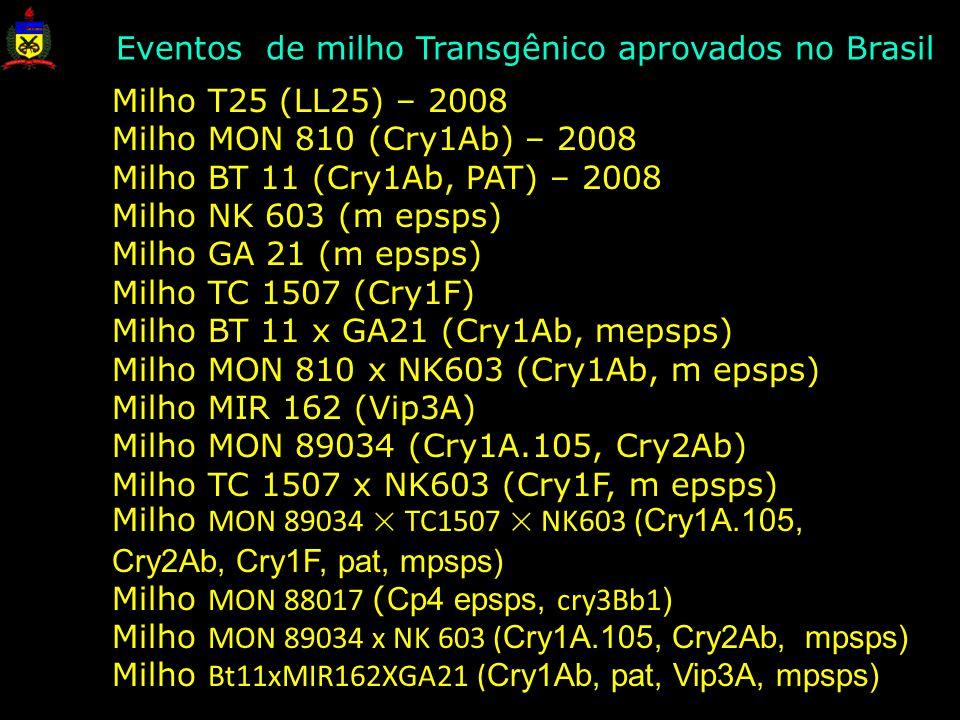 Milho T25 (LL25) – 2008 Milho MON 810 (Cry1Ab) – 2008 Milho BT 11 (Cry1Ab, PAT) – 2008 Milho NK 603 (m epsps) Milho GA 21 (m epsps) Milho TC 1507 (Cry