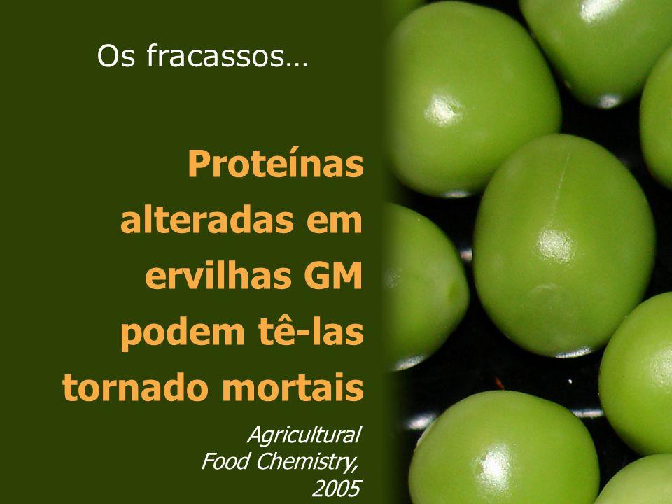 Proteínas alteradas em ervilhas GM podem tê-las tornado mortais Agricultural Food Chemistry, 2005 Os fracassos…