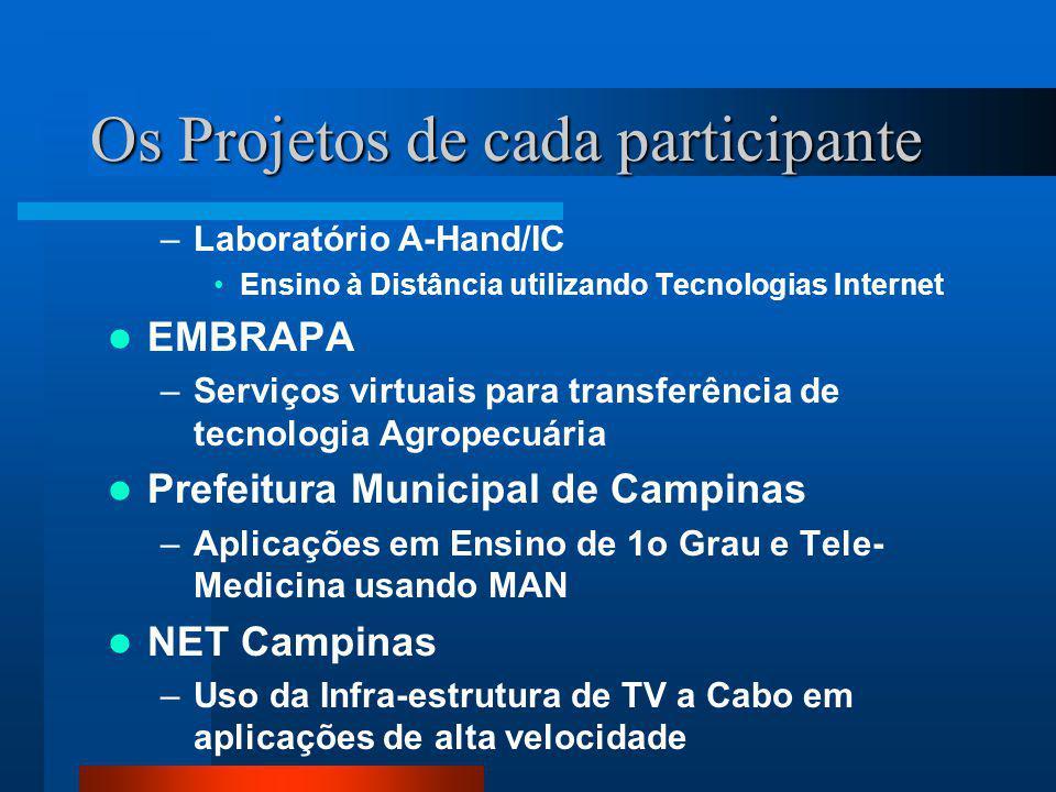 Os Projetos de cada participante –Laboratório A-Hand/IC Ensino à Distância utilizando Tecnologias Internet EMBRAPA –Serviços virtuais para transferênc