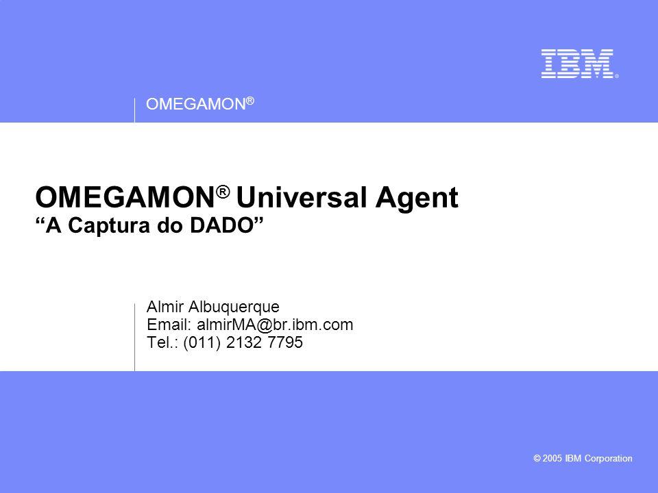 OMEGAMON ® © 2007 IBM Corporation 12 Agente Universal - Data Providers Para z/OS: File Data Provider (USS) HTTP Data Provider TCP/IP Socket Data Provider SNMP Data Provider ODBC Data Provider