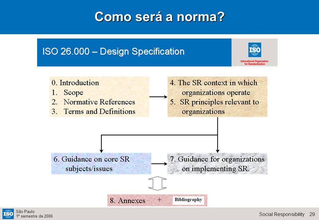 29Social Responsibility São Paulo 1º semestre de 2006 Como será a norma