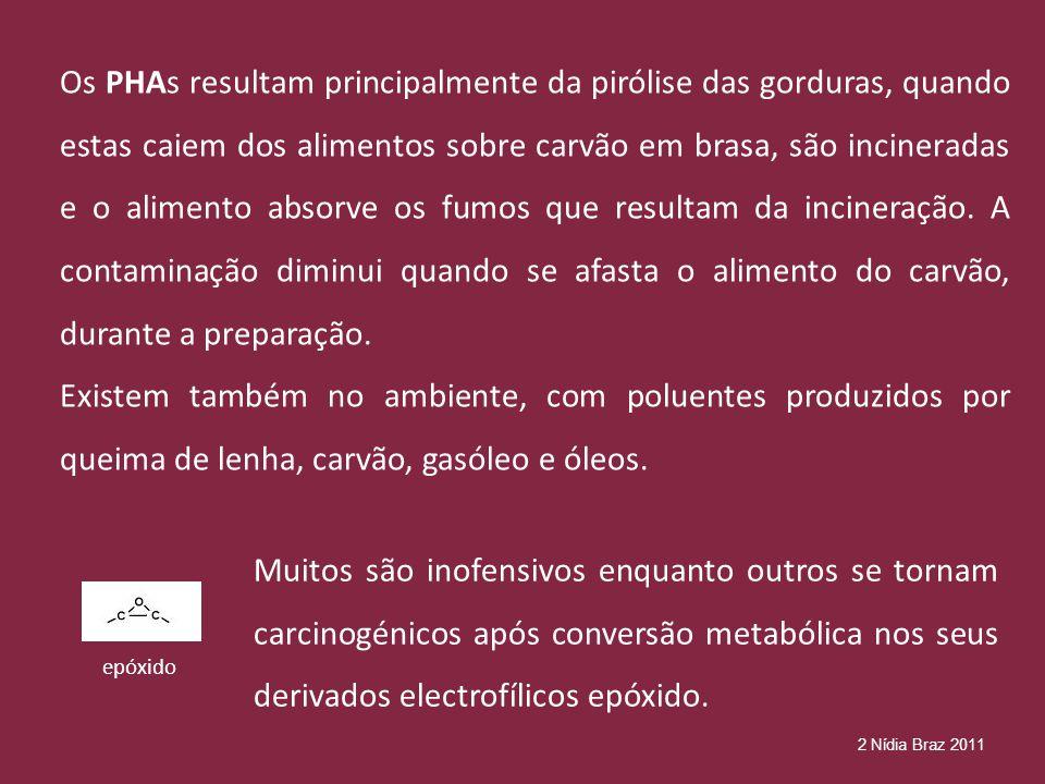 Os PHAs resultam principalmente da pirólise das gorduras, quando estas caiem dos alimentos sobre carvão em brasa, são incineradas e o alimento absorve