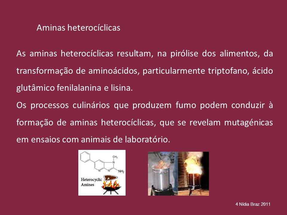 Aminas heterocíclicas As aminas heterocíclicas resultam, na pirólise dos alimentos, da transformação de aminoácidos, particularmente triptofano, ácido glutâmico fenilalanina e lisina.