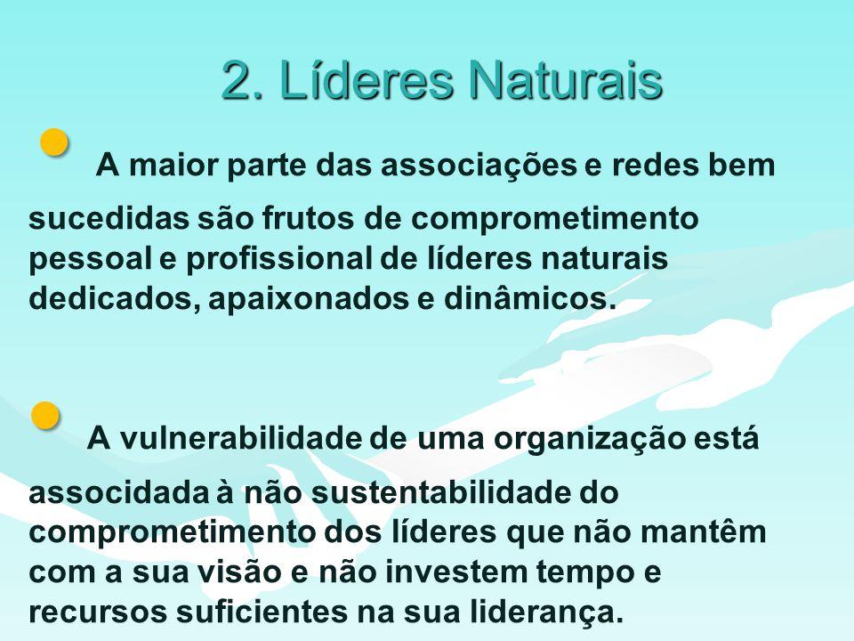 2. Líderes Naturais A maior parte das associações e redes bem sucedidas são frutos de comprometimento pessoal e profissional de líderes naturais dedic