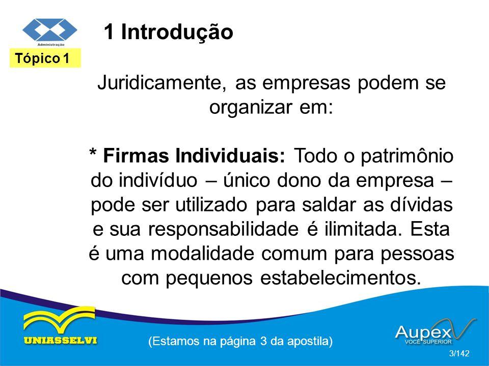 1 Introdução Juridicamente, as empresas podem se organizar em: * Firmas Individuais: Todo o patrimônio do indivíduo – único dono da empresa – pode ser utilizado para saldar as dívidas e sua responsabilidade é ilimitada.