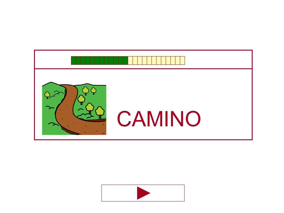 CAMI … NO MO ÑO O