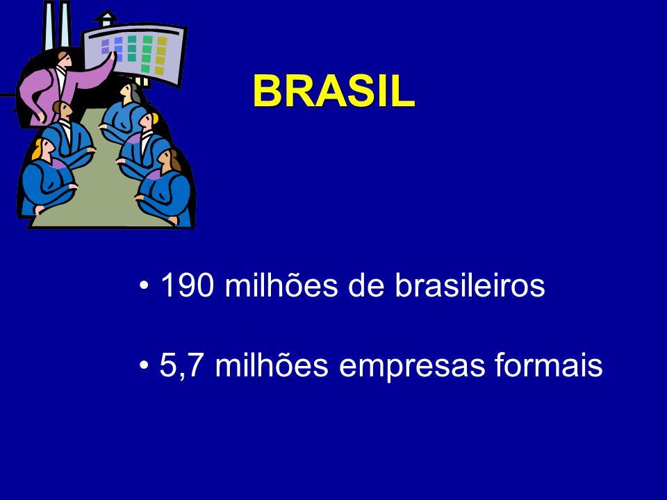 Representatividade dos Pequenos Negócios no Brasil Em média geram receita mensal inferior a R$ 1.500,00 10 milhões de informais 80% contavam com o trabalho de uma única pessoa Fonte: IBGE 2003 50% dos negócios informais por falta de emprego ou complementação da renda