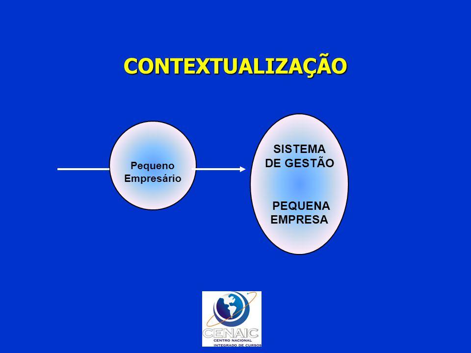 Pequeno Empresário SISTEMA DE GESTÃO PEQUENA EMPRESA CONTEXTUALIZAÇÃO