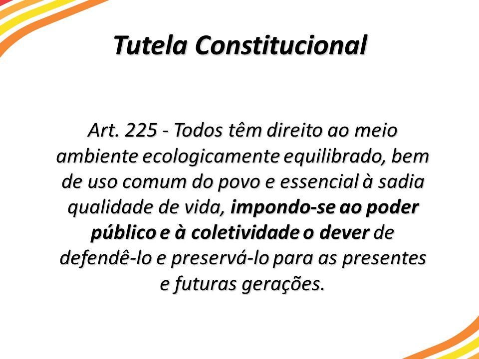 Tutela Constitucional Art. 225 - Todos têm direito ao meio ambiente ecologicamente equilibrado, bem de uso comum do povo e essencial à sadia qualidade