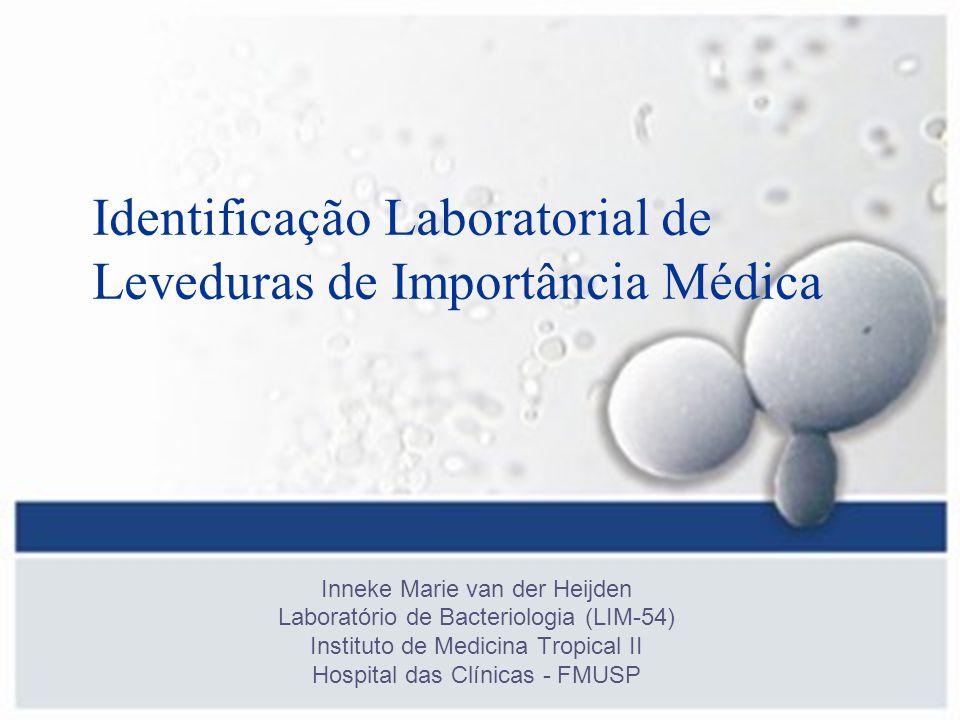 Identificação Laboratorial de Leveduras de Importância Médica Inneke Marie van der Heijden Laboratório de Bacteriologia (LIM-54) Instituto de Medicina