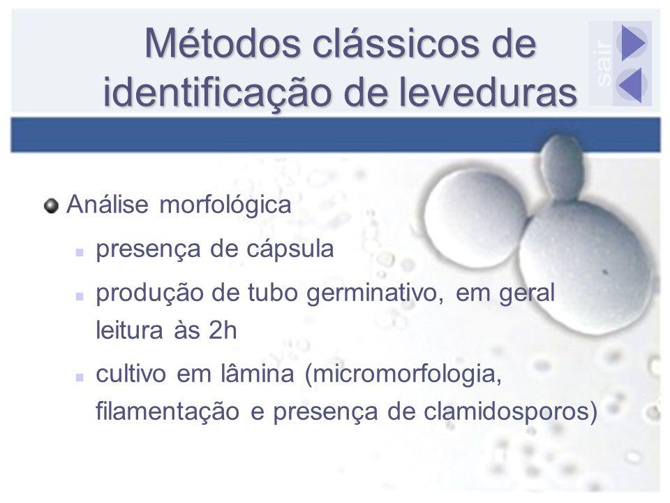 Métodos clássicos de identificação de leveduras Análise morfológica presença de cápsula produção de tubo germinativo, em geral leitura às 2h cultivo e