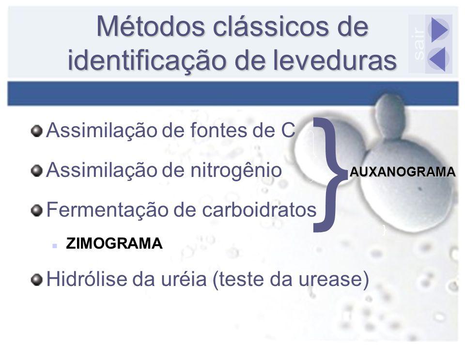 Assimilação de fontes de C Assimilação de nitrogênio Fermentação de carboidratos ZIMOGRAMA Hidrólise da uréia (teste da urease) Métodos clássicos de i